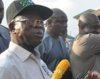 EXTRA: Oshiomhole returns to the streets for corn as election draws nearer (video)