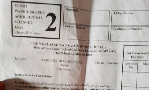 WAEC: How mischievous supervisors share exam questions on WhatsApp groups