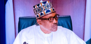 Buhari: Boko Haram attacked Zulum's convoy to sabotage return of IDPs