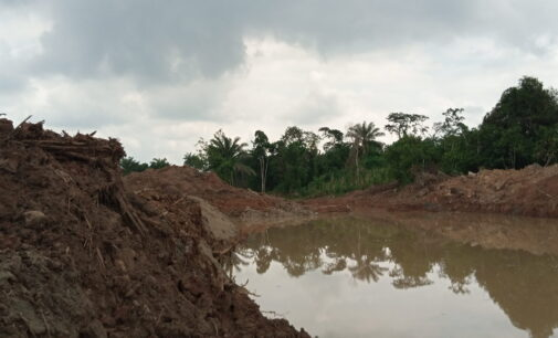 QUEST FOR GOLD: Inside Nigeria's lucrative industry turning farmlands to death traps