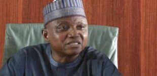 Garba Shehu: Farmers killed in Borno didn't get military clearance to go to the fields