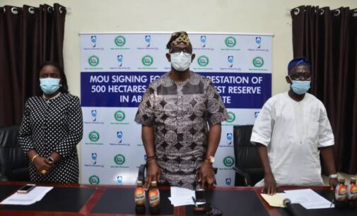 Promoting sustainability through CSR: Nigerian Breweries Plc to plant 600,000 trees in Ogun state