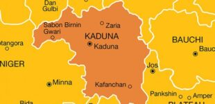 Seven killed in fresh  Kaduna attack