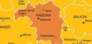 Seven killed in fresh  Kaduna attack