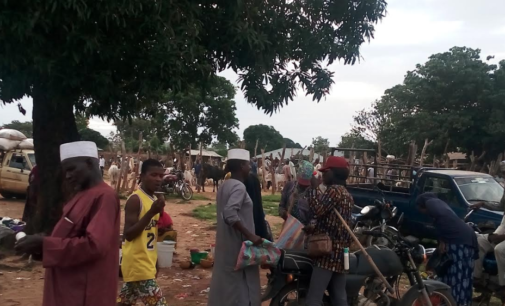 INSIDE STORY: The Oyo community where farmers, herders live together peacefully