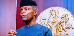 'We'll do all what it takes to secure Nigerians' — Osinbajo breaks silence on Borno killings