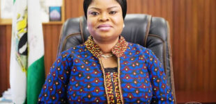 Media crucial to success of SDGs, says presidential aide