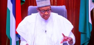 'We won't doze off again' — Buhari vows to ensure rapid economic growth
