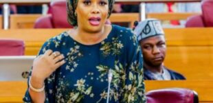Lagos lawmaker on #EndSARS: Most Nigerian youths are always high on drugs