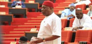 Orji Kalu: Igbo had no say in Nigeria's amalgamation