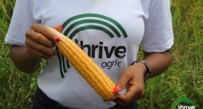 Thrive Agric announces refund of overdue payments to investors — a year after repayment challenges