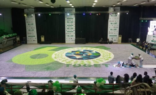 Nigeria sets world record with 60,000 cupcakes mosaic to mark independence