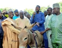 EXTRA: Ganduje's aide empowers youth with donkeys