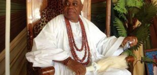 Ondo monarch shot dead