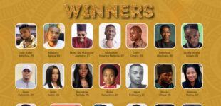FULL LIST: Mr Macaroni, Rema, Sam Adeyemi win big at TFAA 2020