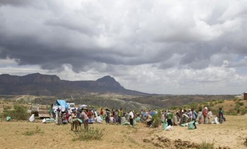 Report: Ethiopian police searching for ethnic Tigrayans amid fears of civil war