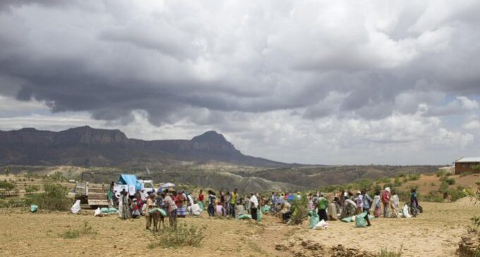 Hundreds of Civilians Slaughtered in Ethiopia's Tigray Region