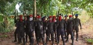 FG: IPOB attacked 164 police stations, killed 175 security operatives