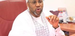 Insecurity: Buhari's efforts not good enough, says Katsina senator