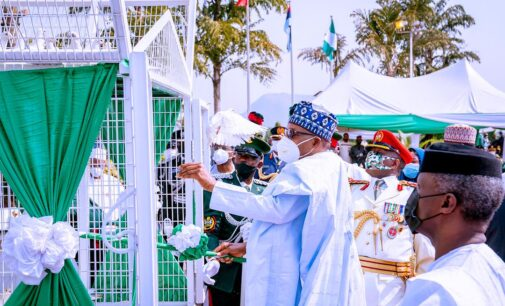 'Pigeons have joined #EndSARS protest' — reactions as birds released by Buhari refuse to fly