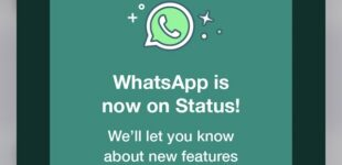 Anxiety as WhatsApp puts up own status to remind users of its privacy policy