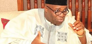 'I see major spiritual challenge' — Doyin Okupe reacts to son's gay status