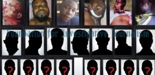PORTRAITS OF BLOOD (II): Names, photos, videos — how Lekki #EndSARS protesters were shot