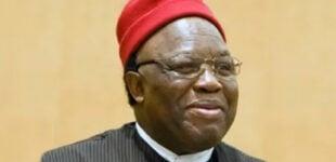 Ohanaeze Ndigbo: Igbo presidency is our agenda… 2023 is our turn