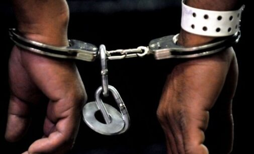 Adamawa police arrest two pastors over 'extra-marital affair'