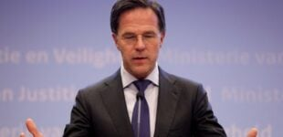 Dutch govt resigns after wrongly accusing parents of child welfare fraud