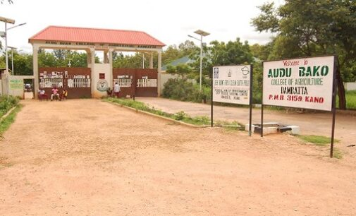 Insecurity: Kano orders closure of four tertiary institutions