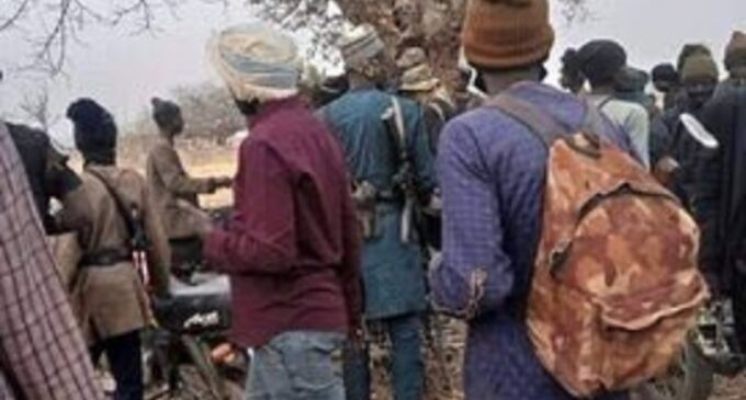 Insurgents, bandits 'occupy 1,129 sqm' of Nigeria's forest reserves