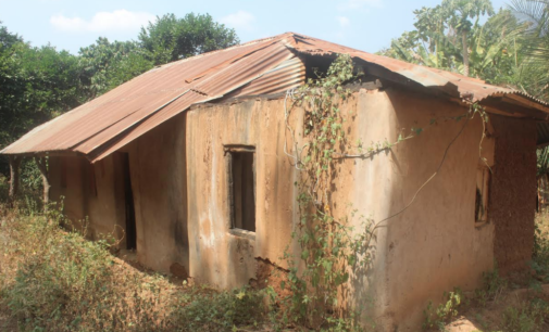 INSIDE STORY: Ebonyi communities where neighbours have been killing each other for decades