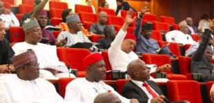 Image result for It Is Time To Declare State Of Emergency On Security- Senate