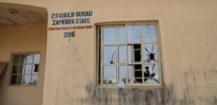 Seven of 317 abducted Jangebe schoolgirls 'may have escaped'