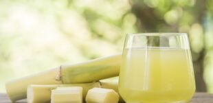 Sugarcane can boost sperm count, conception, says nutritionist