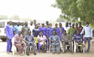 240mt of cassava roots daily: Replicating the success of Ado Awaye in Ikole Ekiti
