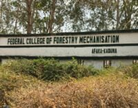 Afaka abduction: Kaduna hands over 5 freed students to parents