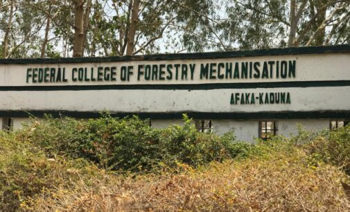Afaka abduction: Kaduna confirms release of five more students