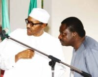 Femi Adesina: Buhari determined to leave a legacy of strong democratic institutions