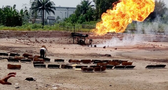 SPECIAL REPORT: How Delta women use heat from gas flaring sites to dry tapioca