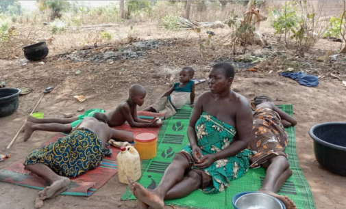 INSIDE STORY: How herders-farmers crisis has turned Nigerians to refugees in Benin Republic