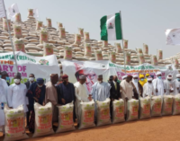 Emefiele: 2.9m farmers have benefitted fromanchor borrowers' programme