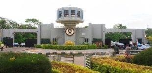 UI, UNN, UNILORIN… here are Nigeria's best varsities based on quality of scientists