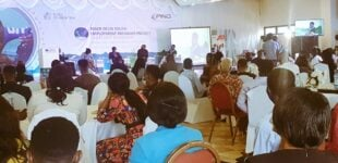 NGO trains Niger Delta youths on ICT, renewable energy