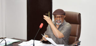 'No point rushing into a fruitless dialogue' — Ngige explains delayed meeting with JUSUN