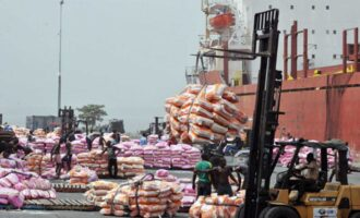 CBN: FX spending on food importation dropped by half in January