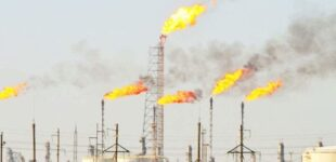 Stakeholders seek efficient management of gas reserves to improve energy sector