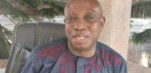 Uwazuruike: ESN is social media outfit — only south-east governors can set up security unit