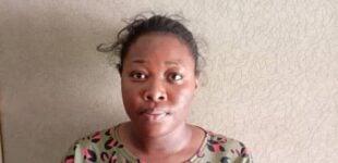 NDLEA nabs undergraduate who 'sells drugged cookies' to school kids in Abuja